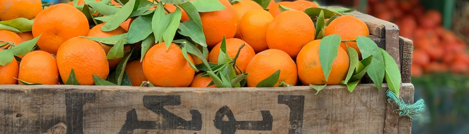 Taste the famous oranges of Marrakesh as part of the hike experience